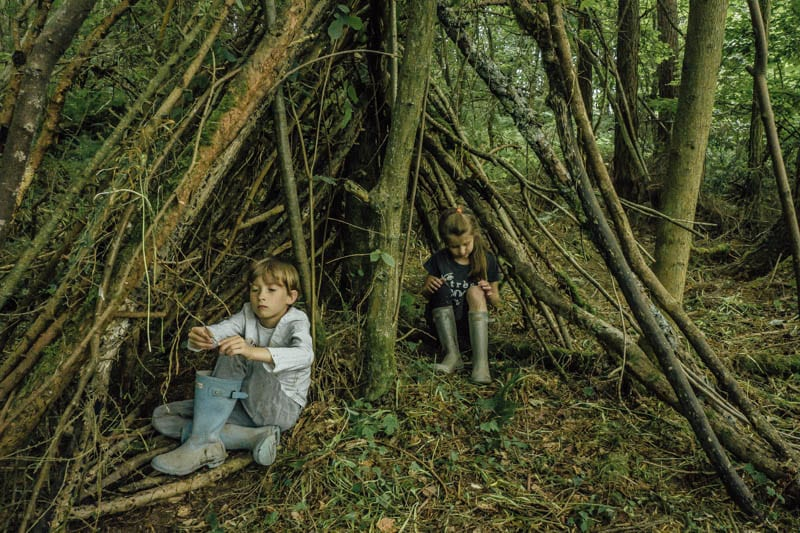 Den building in the woods