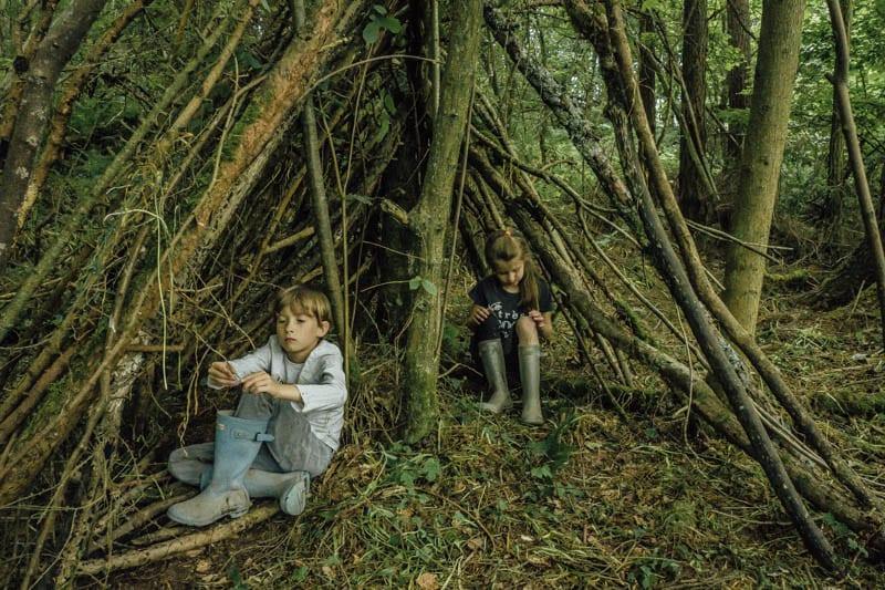 Den building in the woods