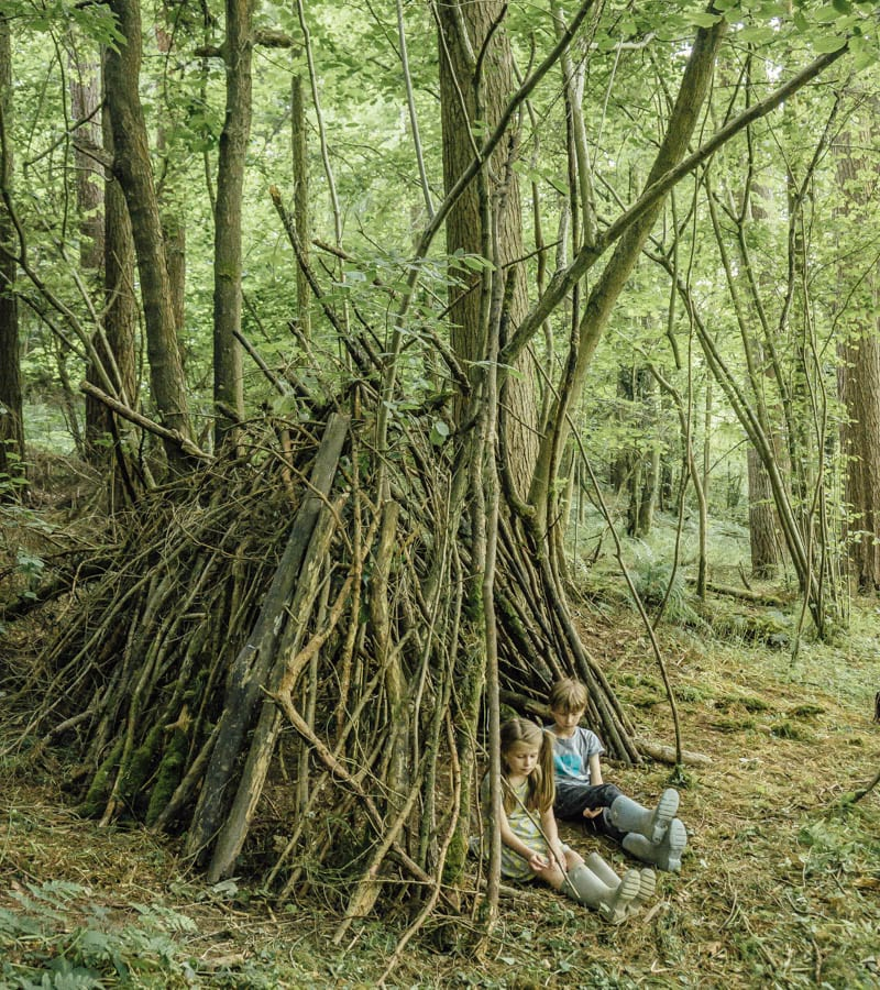 Den building in woods