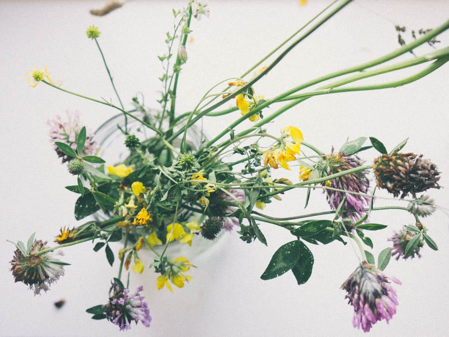 Wild flowers in jar from above