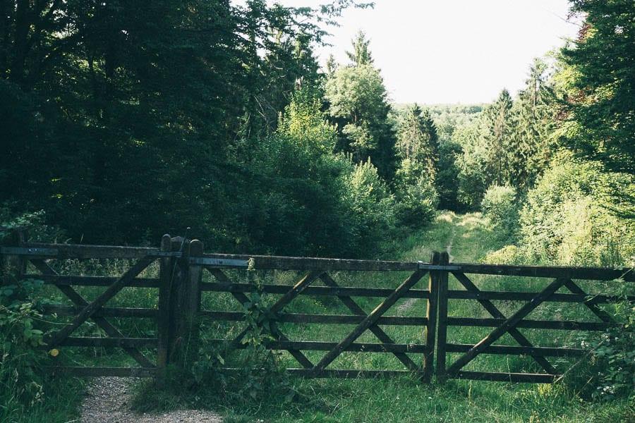 Gate to wood path