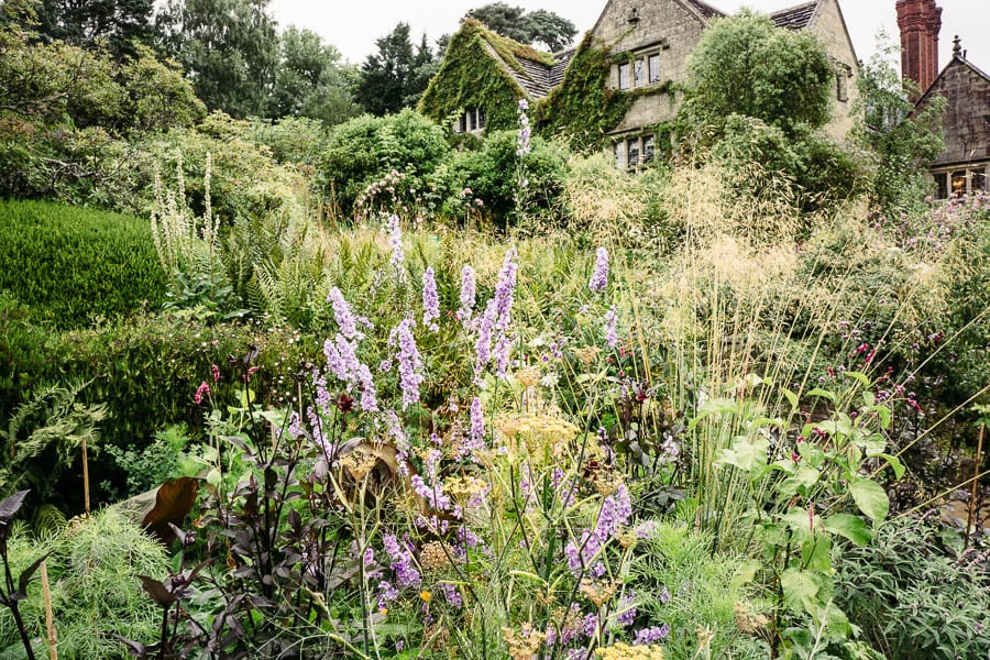 Wild garden flowerbed infront  Gravetye Manor