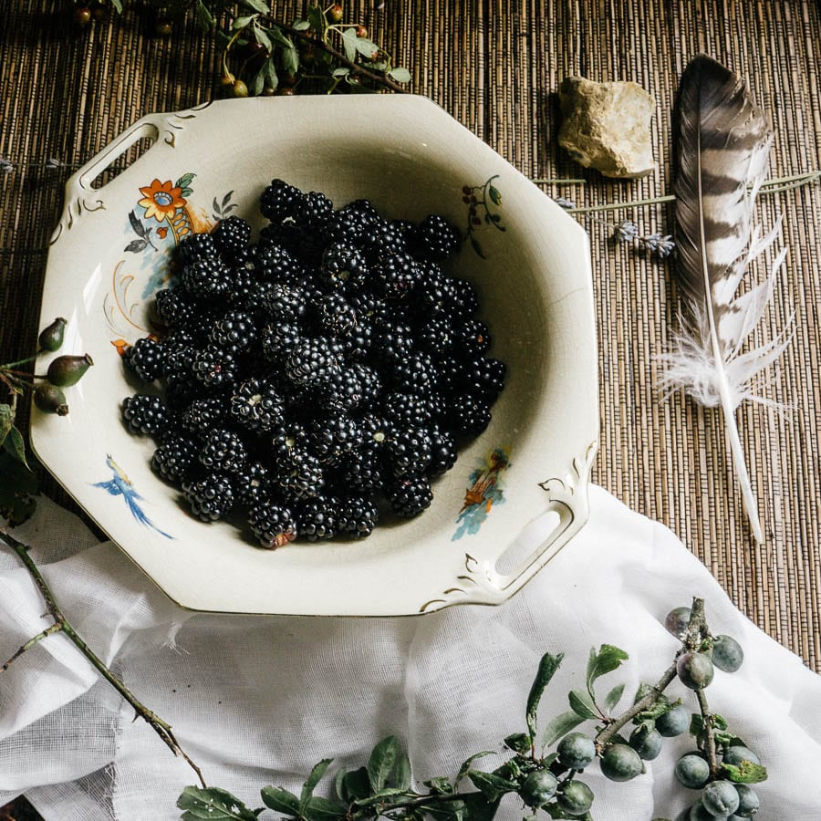 Blackberries in foraging still life