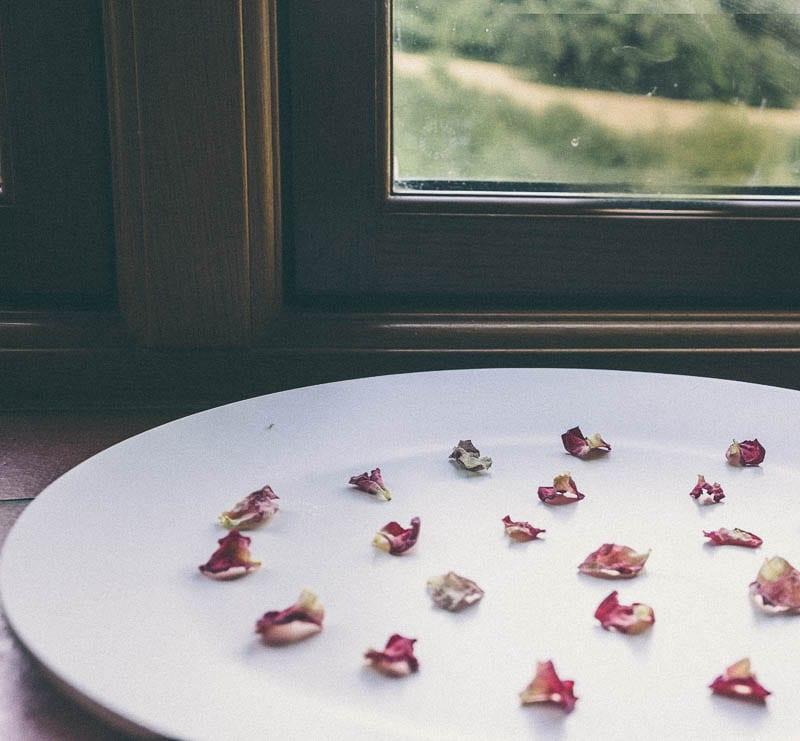 Drying rose petals next to window