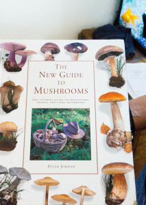 The New Guide to Mushrooms book