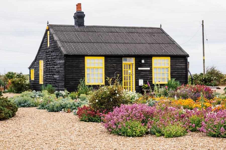 Derek Jarmans Garden Prospect Cottage in June
