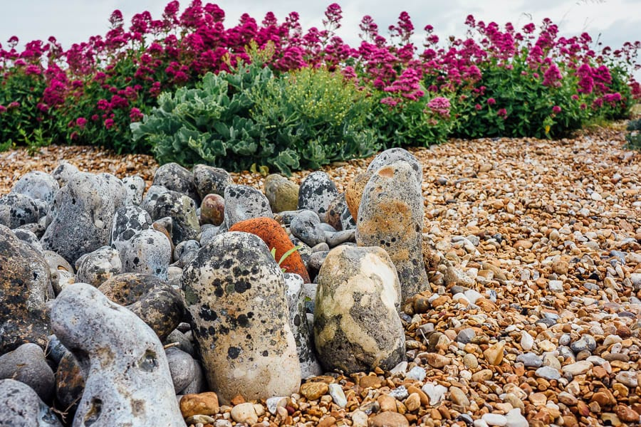 Derek Jarmans Garden rock circle and flowers