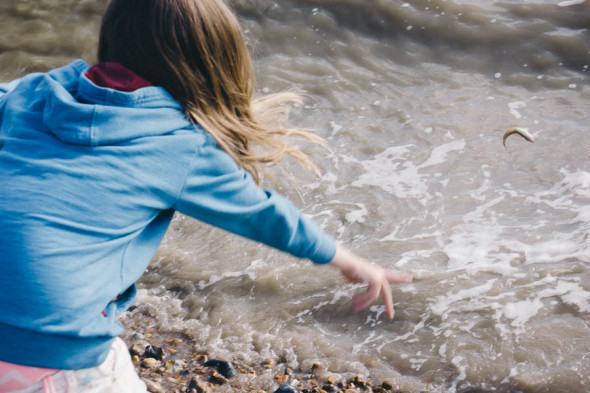 Shrimping in Kent throwing fish in water