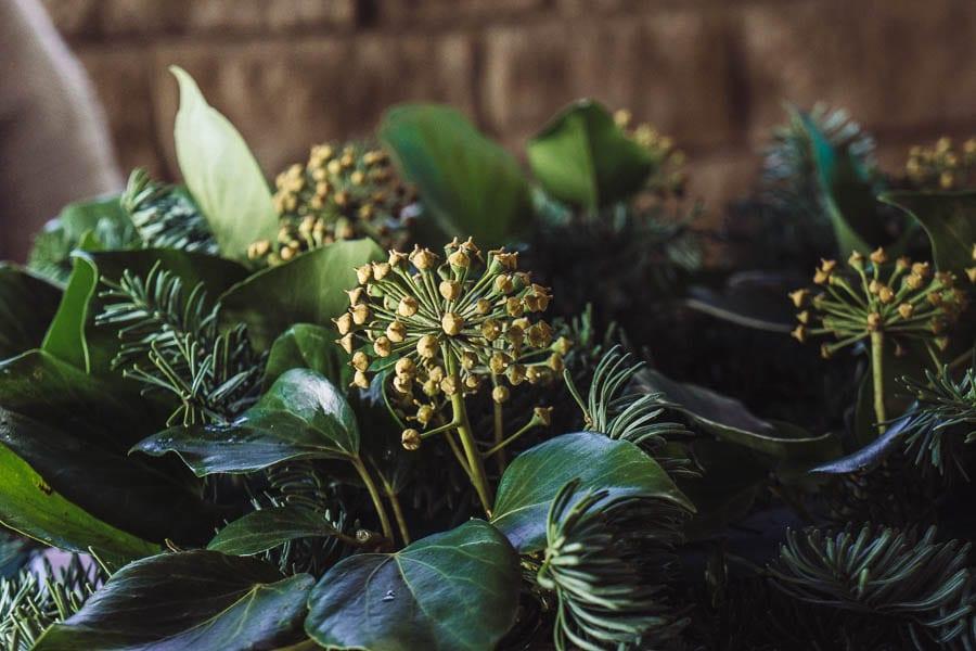 Christmas wreath tree ivy