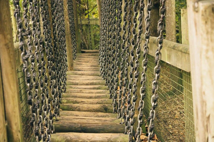 Groombridge boardwalk wood steps