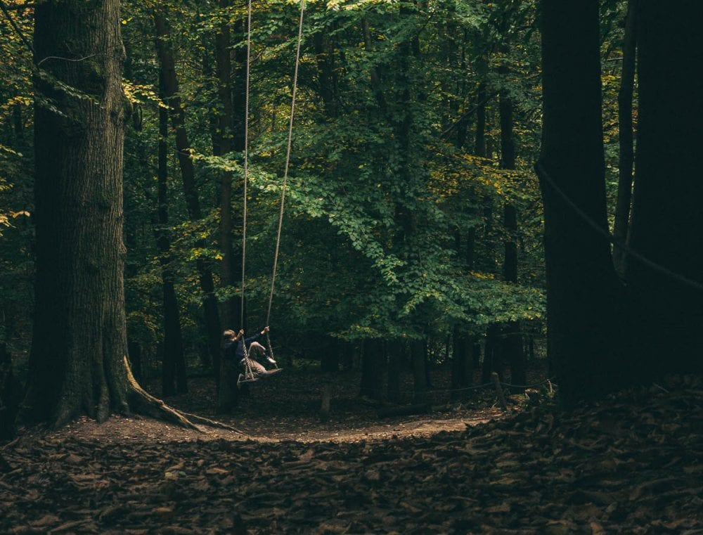 Swing in the Enchanted Forest