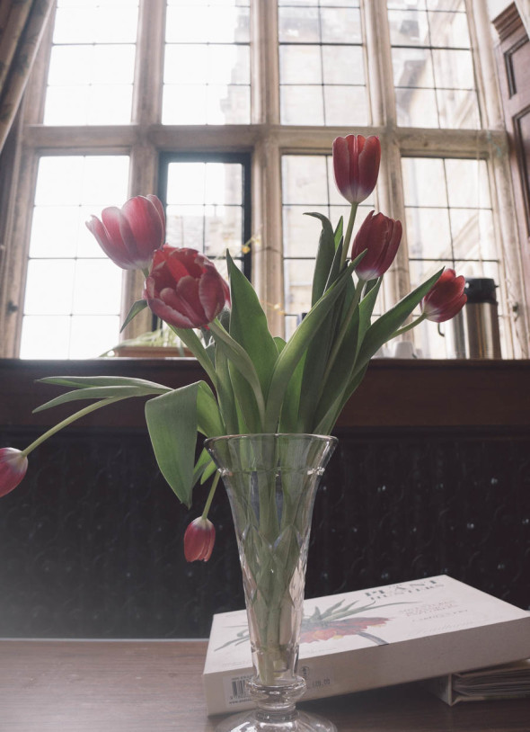 The Plant Hunters vase of tulips