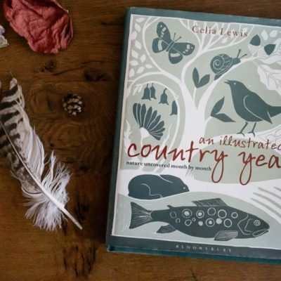On my bookshelf: An Illustrated Country Year