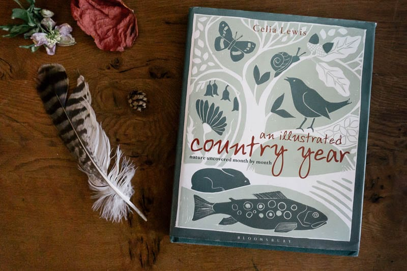An Illustrated Country Year by Celia Lewis