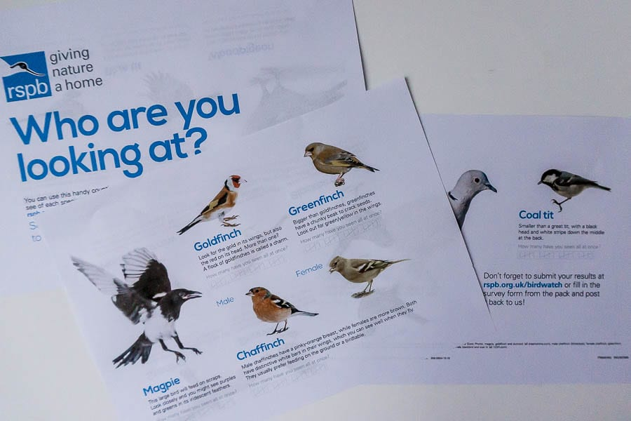 Big Garden Birdwatch survey