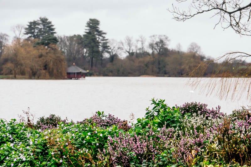 Hever Castle lake and pagoda