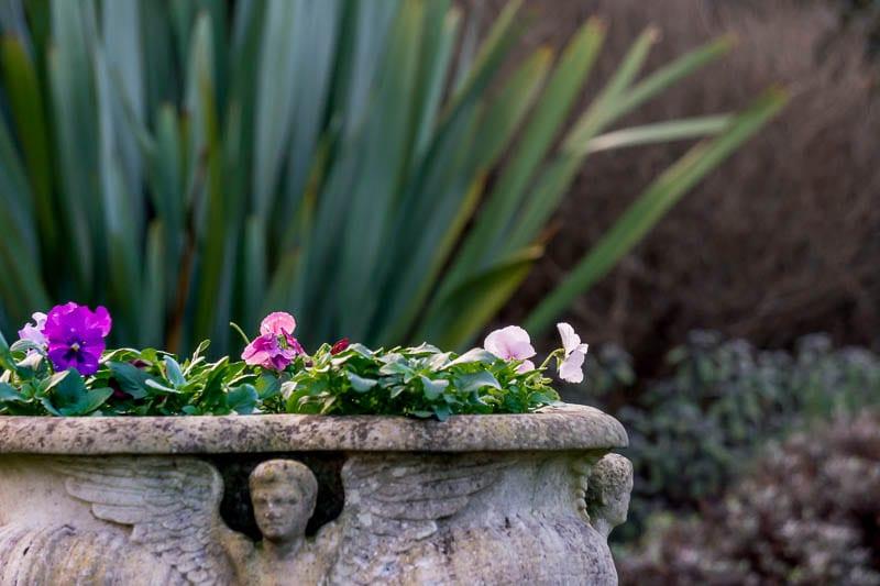 Hever Italian Garden roman pot with flowers