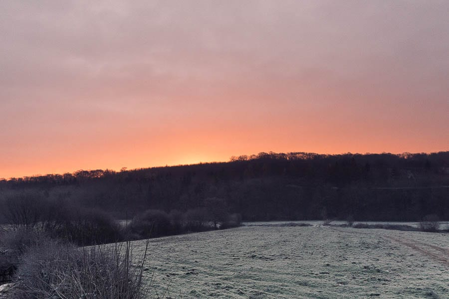 January winter sunrise and frost