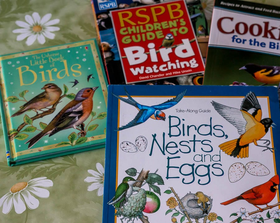 Kids bird watching Bird books for kids