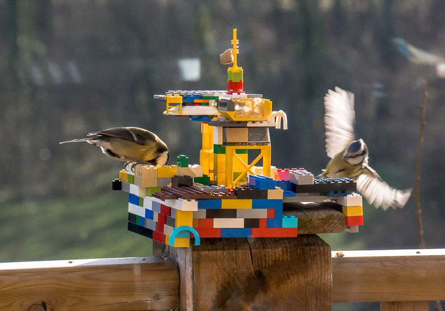 Kids bird watching Lego bird feeder