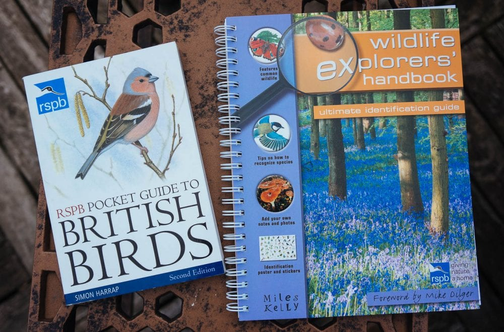 Kids bird watching RSPB bird guide book