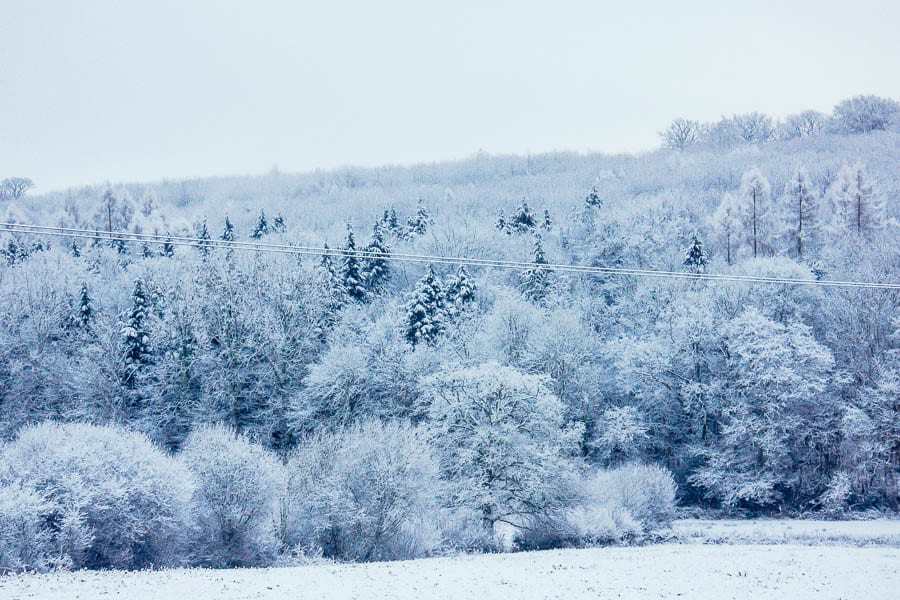 Snow in our valley