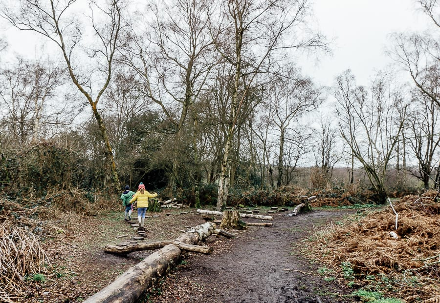 Natural playground balancing on tree stumps