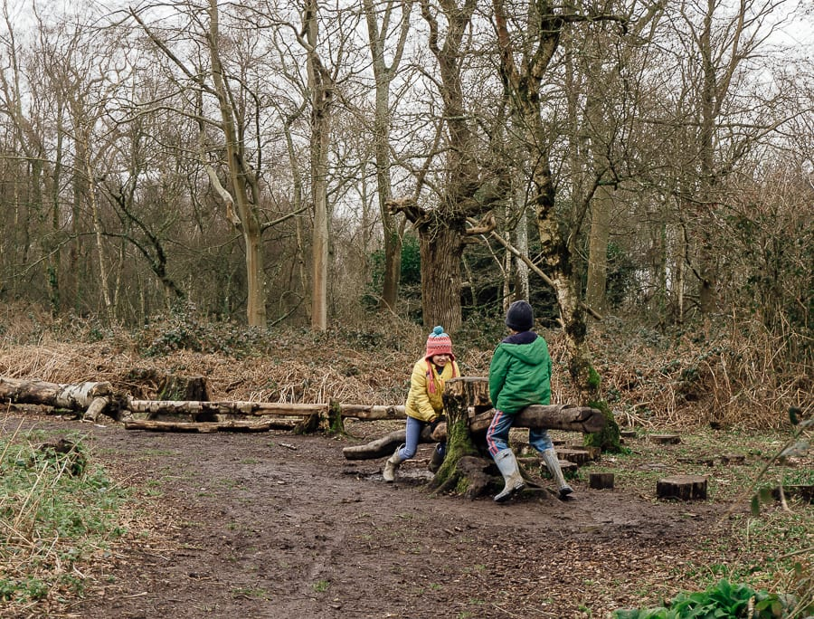 Natural playground tree seesaw