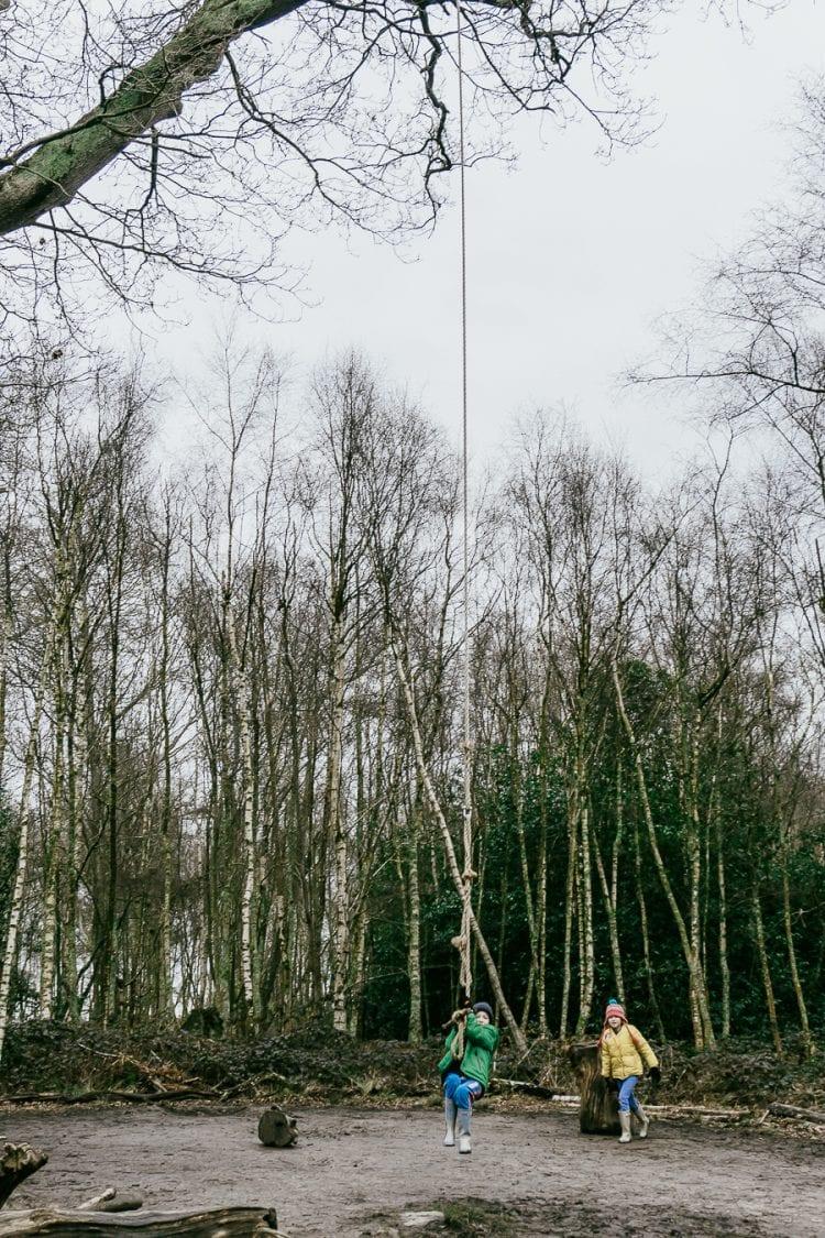 Natural playground tree swing