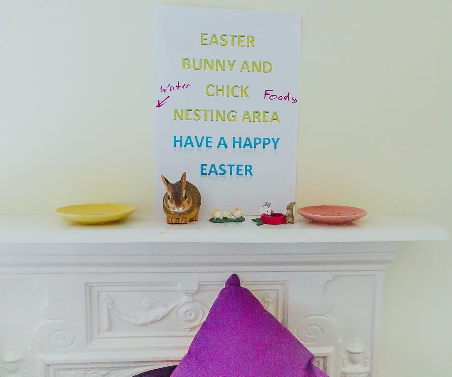 Easter bunny nesting area