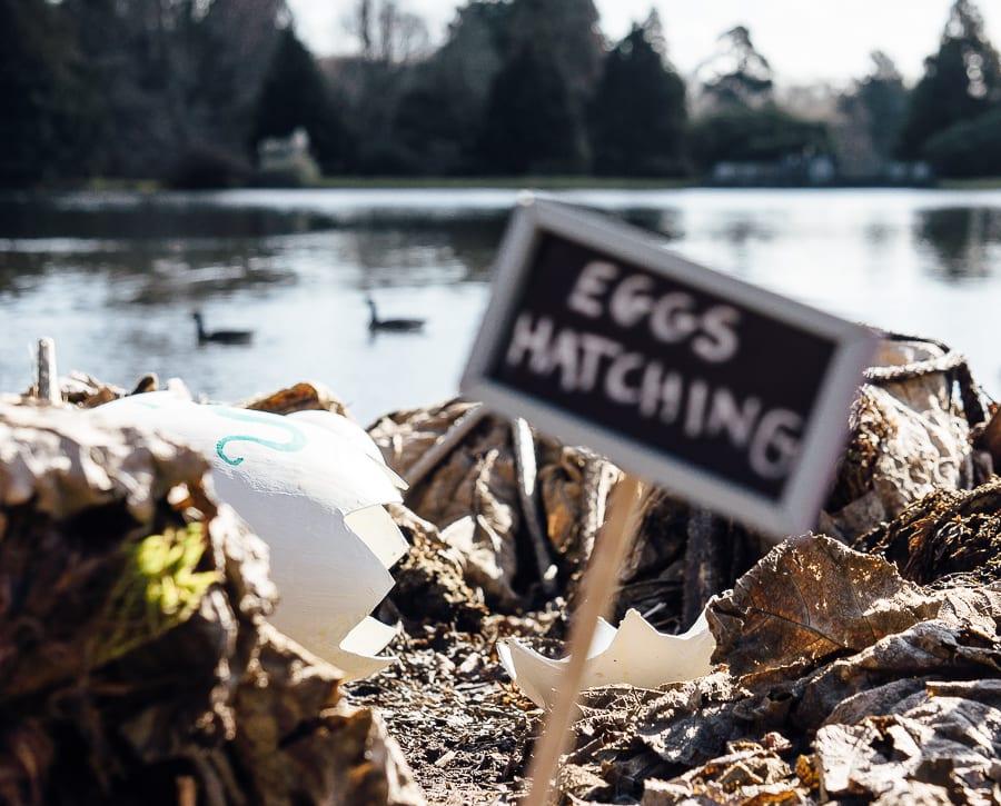 Sheffield Park Easter Egg Hunt hatched eggs and lake