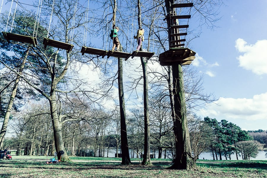 Treetop adventure for kids in town park