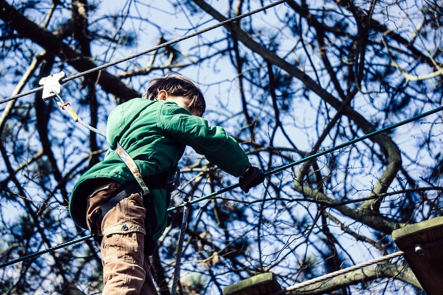 Treetop adventure harness attached to wire