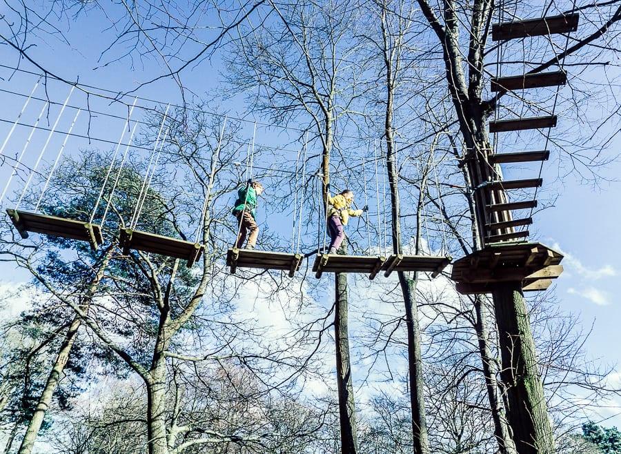 Treetop adventure kids on plank bridges