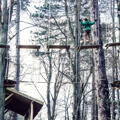 A treetop adventure with kids