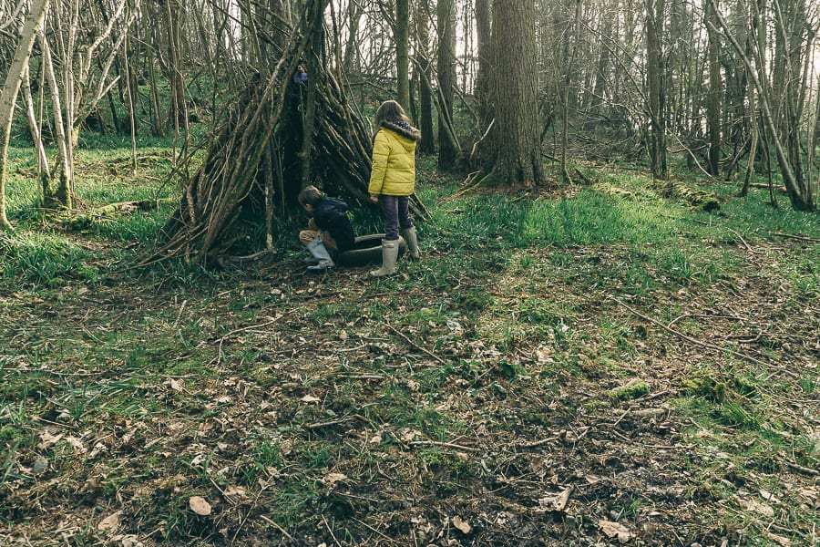 Woods Picnic clearing outside den