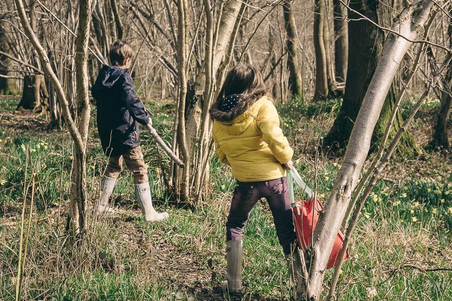 Woods Picnic kids and picnic bag