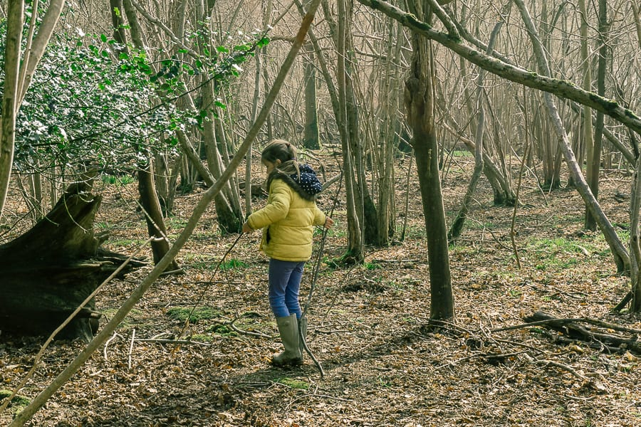 Follow badger path with kids