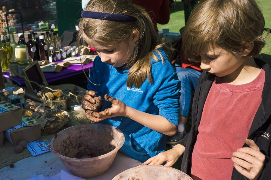 Make a seed bomb with kids