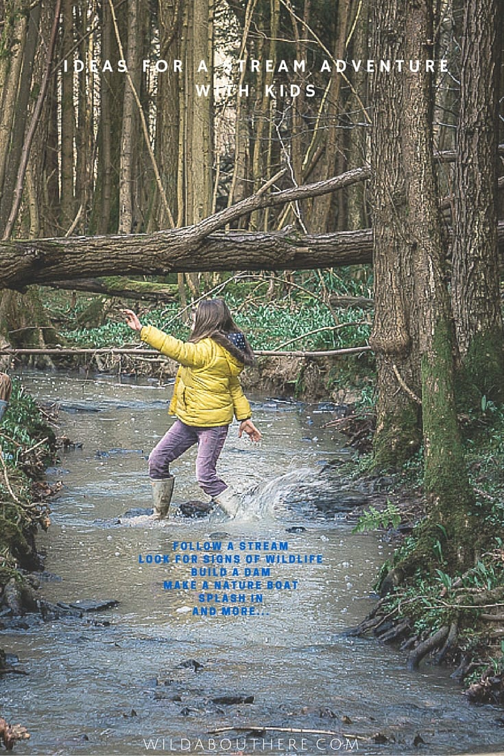 Ideas for a stream adventure with kids