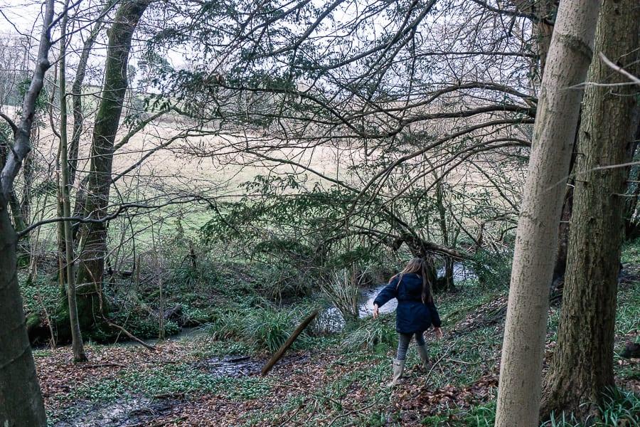Strream adventure following water path