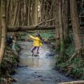 Strream adventure splashing across