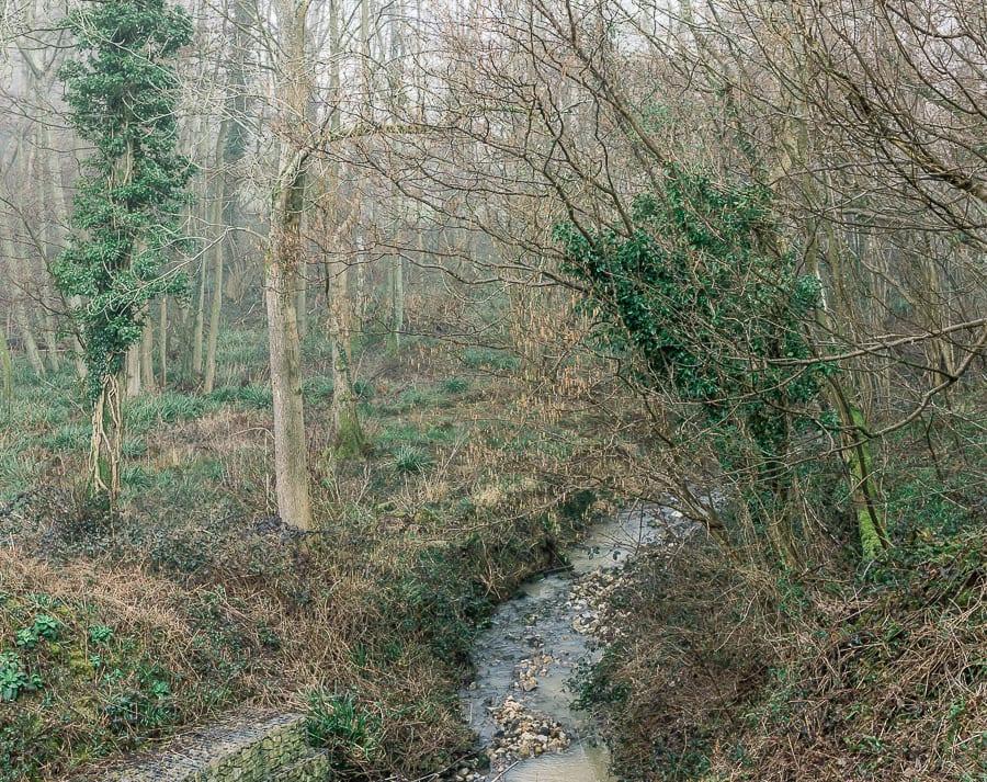 A Stream adventure