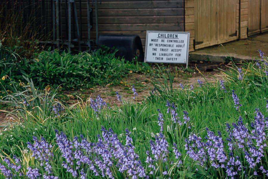 Chiddingstone Castle children sign