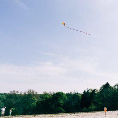 My kids said 'Let's go fly a kite'