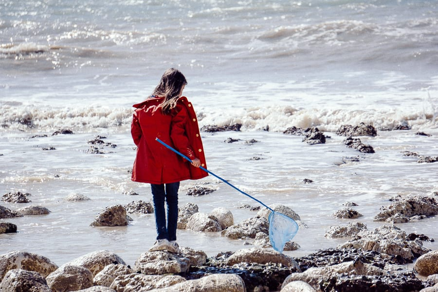 Rock pooling adventure with kids