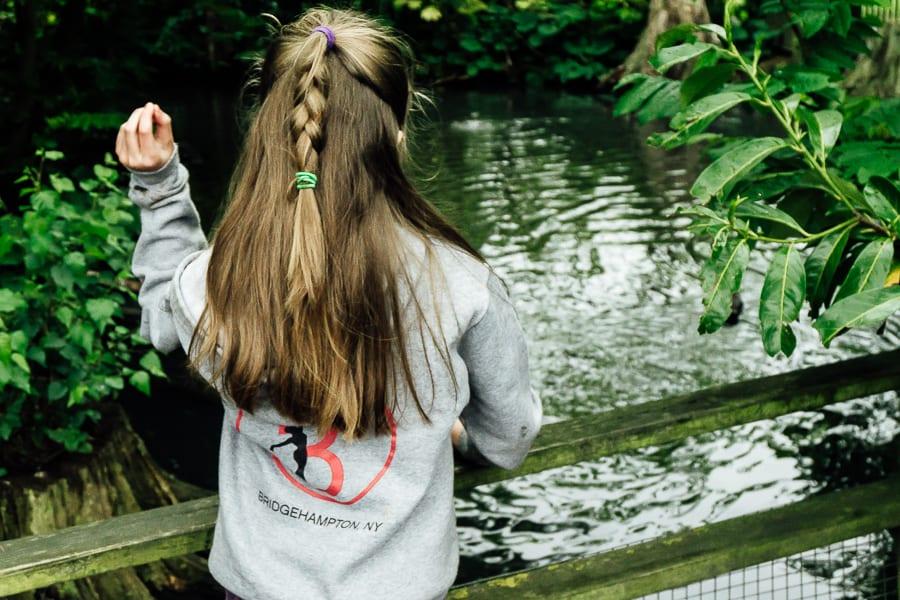 London Wetland Centre feeding ducks