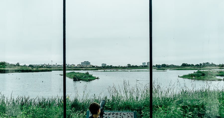 London Wetland Centre window