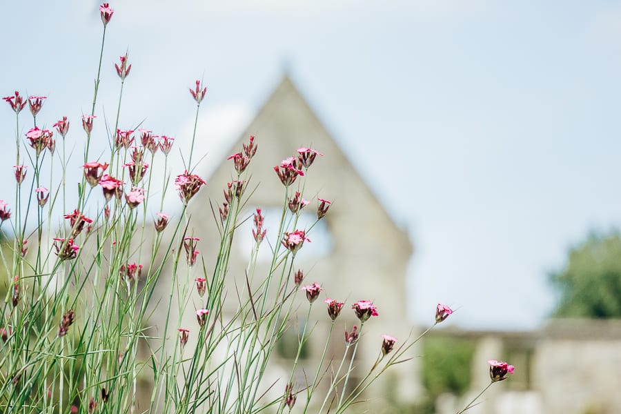 Nymans Flowers ruins