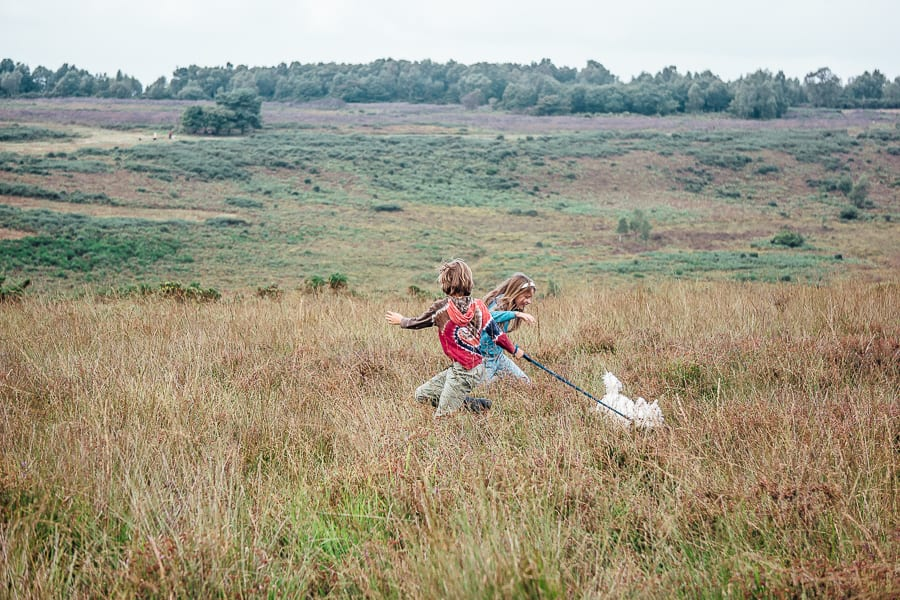 Kids and dog in heathland